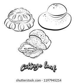 Hand drawn sketch of Cottage loaf bread. Vector drawing of Yeast bread food, usually known in United Kingdom. Bread illustration series.