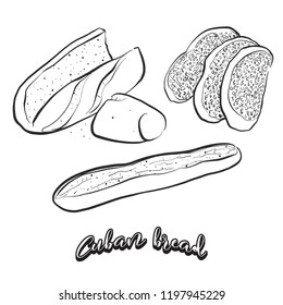 Hand drawn sketch of Cuban bread bread. Vector drawing of Yeast bread food, usually known in United States. Bread illustration series.