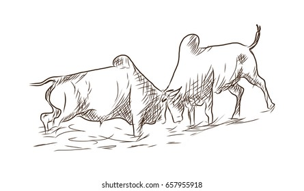 Hand drawn sketch of farmers bull in vector sketch.