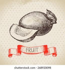 Hand drawn sketch fruit mango. Eco food background. Vector illustration