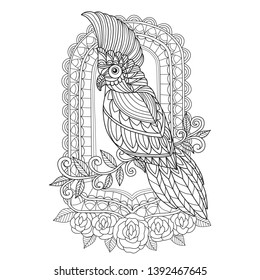 Hand drawn sketch illustration of bird and mirror for adult coloring book, T-shirt emblem, logo or tattoo, zentangle design elements. Zentangle stylized cartoon isolated on white background.