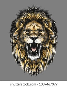 Roaring Lion Sketch Images Stock Photos Vectors Shutterstock Learn how to draw roaring lion pictures using these outlines or print just for coloring. https www shutterstock com image vector hand drawn sketch lion head color 1309467379