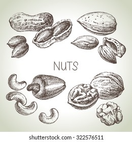 Hand drawn sketch nuts set. Vector illustration of eco food