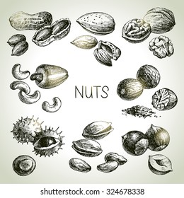 Hand drawn sketch nuts set. Vector illustration