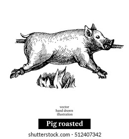 Hand drawn sketch roasted pig. Vector black and white vintage illustration. Isolated object on white background. Menu design