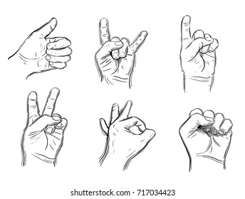 Hand drawn sketch set of human hands .Vector illustration. Izolirovannoi isolated on a background.