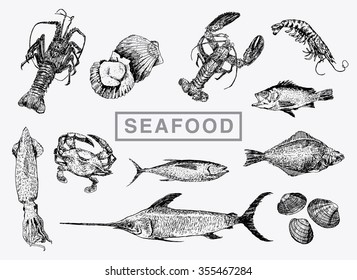Hand drawn sketch set of seafood. Vector big collection, vintage engraving style