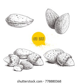 Hand drawn sketch style almond set. Single, group seeds and almond in nutshells group. Organic food, vector illustrations collection isolated on white background.