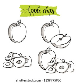 Hand drawn sketch style Apple set. Single, group fruits, apple chips, slices. Organic food, vector doodle illustrations collection isolated on white background.