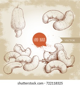 Hand drawn sketch style cashew set. Single, whole fresh cashew fruit and roasted nuts. Organic food vector illustrations. Artwork isolated on retro background.