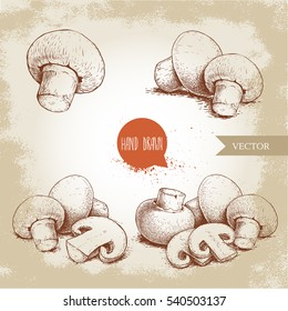 Hand drawn sketch style champignon mushroom composition set. Whole and slice cuts. Vector farm fresh food collection  isolated on old background.
