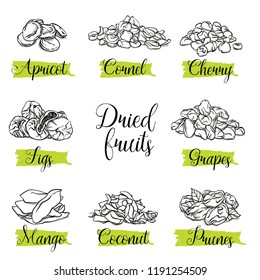 Hand drawn sketch style dried, slices fruits. Mango, apricot, plum, fig, grapes, cherry, dogwood, coconut. Organic fruit with leaf, vector doodle illustrations collection isolated on white background.