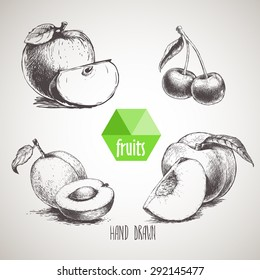 Hand drawn sketch style fruits set. Apple wIth quarter, apricot with half of apricot, double cherries and peach with quarter of peach. Organic food, farm fresh fruit. Vintage style illustration