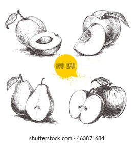 Hand drawn sketch style fruits set. Apricots, peaches, half pears, apples.Bio food vector illustration collection isolated on white background.