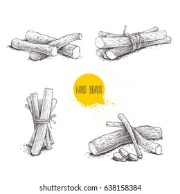 Hand drawn sketch style liquorice roots bunches set. Herbal and aromatic vector illustrations and drawings collection. Isolated on white background.
