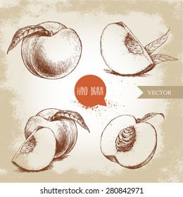 Hand drawn sketch style peach fruit set. Vintage eco food vector illustration. Ripe peach, peach slices. Grunge background.