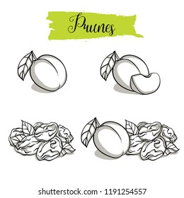 Hand drawn sketch style Plum set. Single, group fruits, dried, slice of plum, prunes. Organic food, vector doodle illustrations collection isolated on white background.