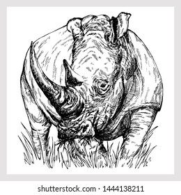 Hand drawn sketch style rhino isolated on white background. Vector illustration.