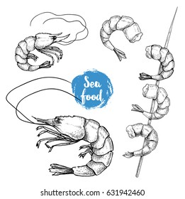 Hand drawn sketch style seafood set. Shripms, prawns, grilled shrimps on bamboo stick collection vector illustrations.
