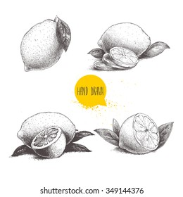 Hand drawn sketch style set of lemon fruit with leafs and sliced lemon. Retro vector illustration.