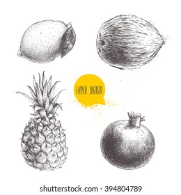 Hand drawn sketch style tropical fruits set isolated on white background. Lemon with leaf, coconut, pineapple and pomegranate.