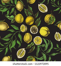 Hand drawn sketch vector iilustration cutrus. Pattern with exotic fruits.