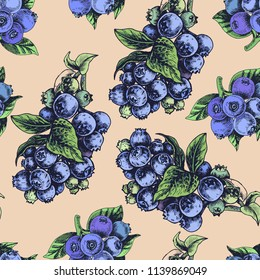 Hand drawn sketch vector iilustration bilberry. Pattern with bilberry.