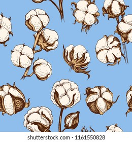 Hand drawn sketch vector iilustration cotton. Pattern with cotton.