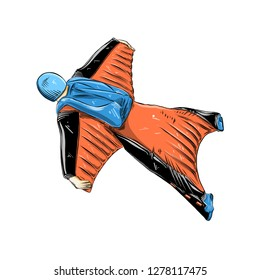 Hand drawn sketch of wingsuit in color, isolated on white background. Detailed vintage style drawing. Vector illustration