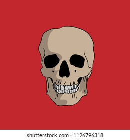 Hand drawn skull on a red background, vector illustration