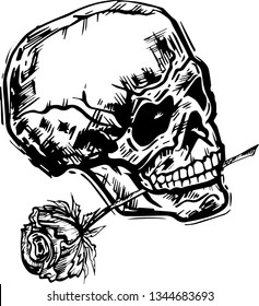 Hand drawn skull with rose on white background
