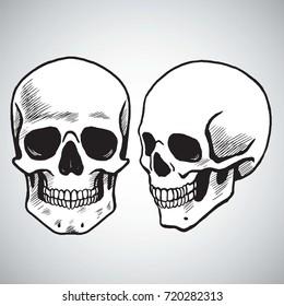 Hand Drawn Skull Set