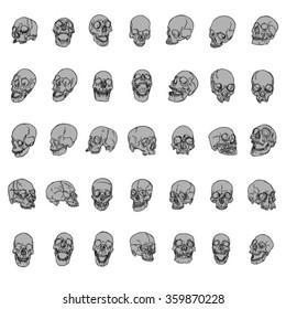 Hand Drawn Skulls Vector Pack