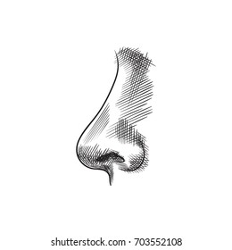 Hand Drawn Smell Sketch Symbol. Vector Nostril  Element In Trendy Style.