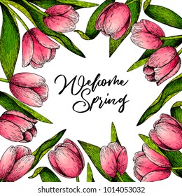 Hand drawn spring floral banner. Colored pink tulip. welcome spring. Hand drawn detailed engraved illustration. Good for Easter, Woman day, Valentine greeting cards, sale flyer, wedding invitation