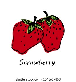 Hand drawn Strawberry isolated on white background. vector illustration.
