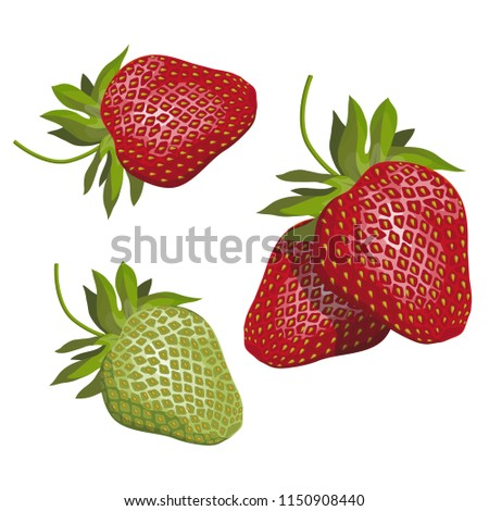 Hand Drawn Strawberry Natural Healthy Food Stock Vector (Royalty ...