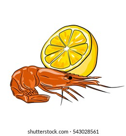 Hand drawn style shrimp with lemon isolated on white background. seafood for a party or dinner at a restaurant serving food from the sea. Prawn.