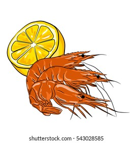 Hand drawn style shrimps with lemon isolated on white background. seafood for a party or dinner at a restaurant serving food from the sea. Prawn.