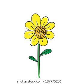 Hand drawn sun flower on white background