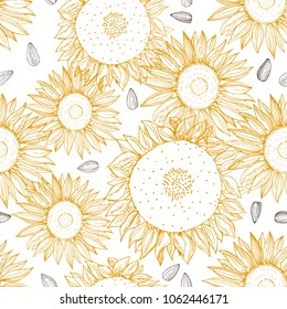 Hand drawn sunflower.  Vector  seamless pattern