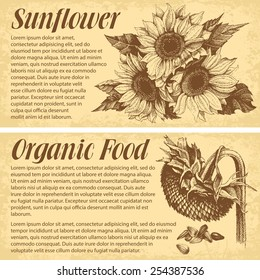 Hand drawn sunflowers. Vector banners with space for your text