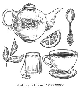 Hand drawn tea set, pot with cup, spoon, lemon and leaves. Vintage etching, pen and ink vector illustration isolated on white background.