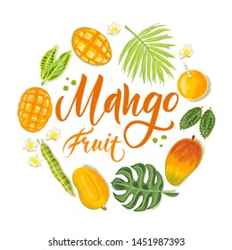 Hand drawn textured mango, flowers and leafs on white background.  Colorful vector flat lay food illustration for healthy food cafe, restaurant, fruits and grocery market