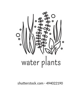 Hand drawn thin line icon, vector logo template illustration. Aquarium care isolated symbol. Water plants, seaweed. Black on white pictogram. Simple mono linear modern design.