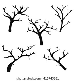 Hand Drawn Tree Branches Collection Set Of Branch Elements Vector