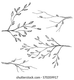Hand drawn tree branches; vector set