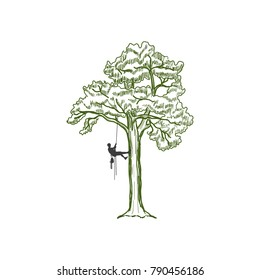 Hand drawn tree with a climber on a white background.Vector.