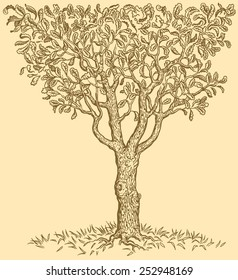 Hand drawn tree isolated on color background .8 EPS