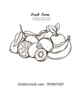 Hand Drawn tropic  fruits.  Ink vintage fruits  banner. Vector illustration with decorative tropical fruits.